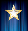 blue curtain gold star
