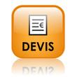 """Bouton Web """"DEVIS"""" (prix service clients vente en ligne conseil)"""