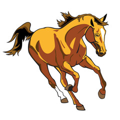 running brown horse