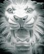 Постер, плакат: Статуя Льва