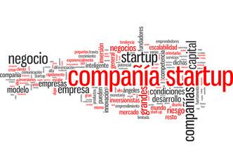 Compañía startup