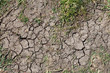 Leinwanddruck Bild - Dry land