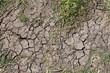 Dry land - 45137492