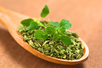 Dried and Fresh Oregano on Wooden Spoon