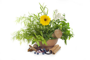 Herbs and spices in mortar on white background