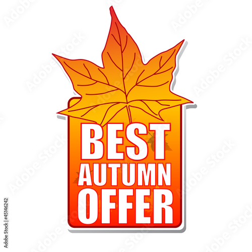 best autumn offer label with leaf