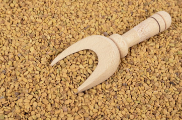 Fenugreek seed in a wooden spoon , seasoning.