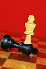 Schach, das königliche Spiel