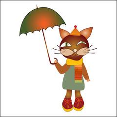 cat with an umbrella