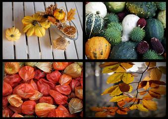 Herbstliche Natur
