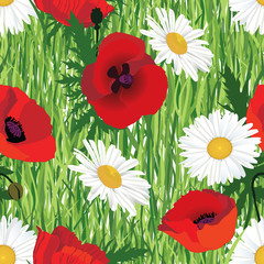 seamless floral pattern. meadow flowers poppy, chamomile