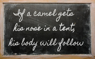 expression - If a camel gets his nose in a tent, his body will f