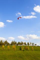 Flight kite against the blue sky in the park