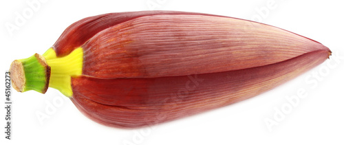 Edible Banana flower over white background