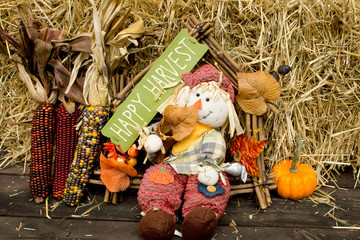 Pumpkins and scarecrow