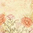 Grungy retro background with roses