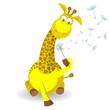 Постер, плакат: Жираф с одуванчиком изолированныйна белом фоне