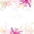cyclamen background