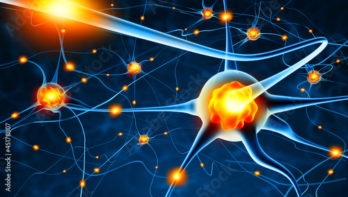 Leinwanddruck Bild Active nerve cells