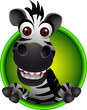 cute zebra head cartoon