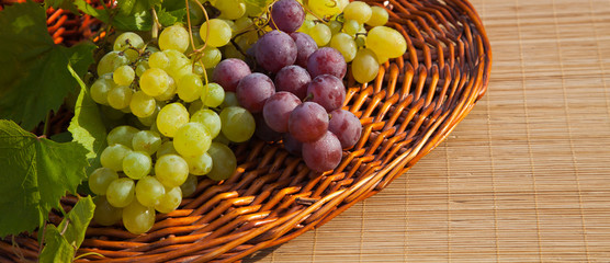 Composition with grapes