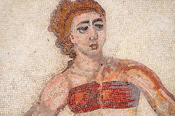 Bikini Girl Mosaic