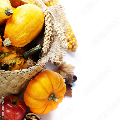 Harvest time, pumpkins