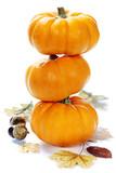 Fototapety pumpkins