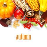 Fototapety Harvest time