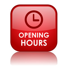 """OPENING HOURS"" Web Button (business contact about information)"