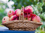 Basket with apples on the table