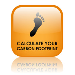 """CALCULATE YOUR CARBON FOOTPRINT"" Button (recycle go green co2)"
