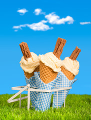 Summer Ice Creams