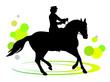 Pferdesport - 3