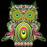 Fototapety Owl Psychedelic Popart - Gufo Psichedelico Decorativo - Vector