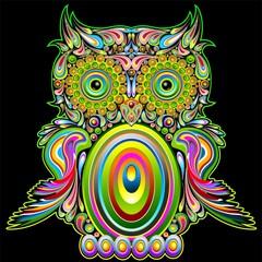 Owl Psychedelic Popart - Gufo Psichedelico Decorativo - Vector