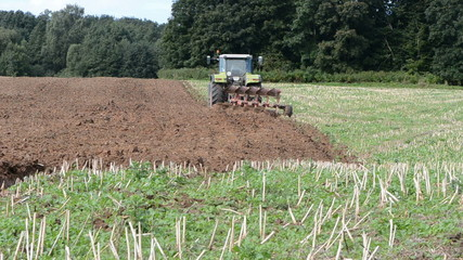 tractor plowed autumn rapes field after harvesting