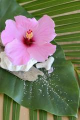 décoration hibiscus
