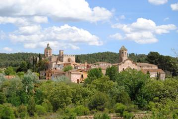 Vista exterior del Monasterio de Santes Creus..