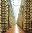 storehouse of parmesan