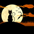 black cat in the moon shine