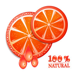 Slice of grapefruit on white background