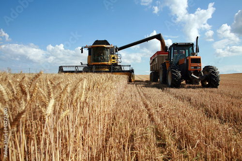 Canvas Cultuur Récolte du blé : moissoneuse et tracteur