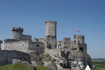 Ruins of old medieval castle