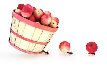 Ants carrying apples standing out from the crowd concept.