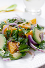 Oranges, watercress, red onion and avocado salad