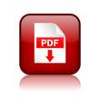 Pdf download vector button