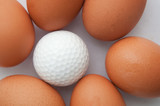golf and eggs idea creative