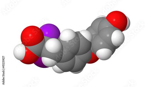 Triiodothyronine (T3) CPK spacefill molecular model