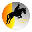 Pferdesport - 5